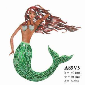 A89VS5